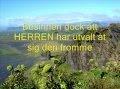 Besinnen dock att HERREN har utvalt åt sig den fromme; - Jesus - Swedish - Sing Georg C.Z. Psalms 4.4 & 5.13
